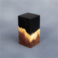 Black Resin/Oak Plinth