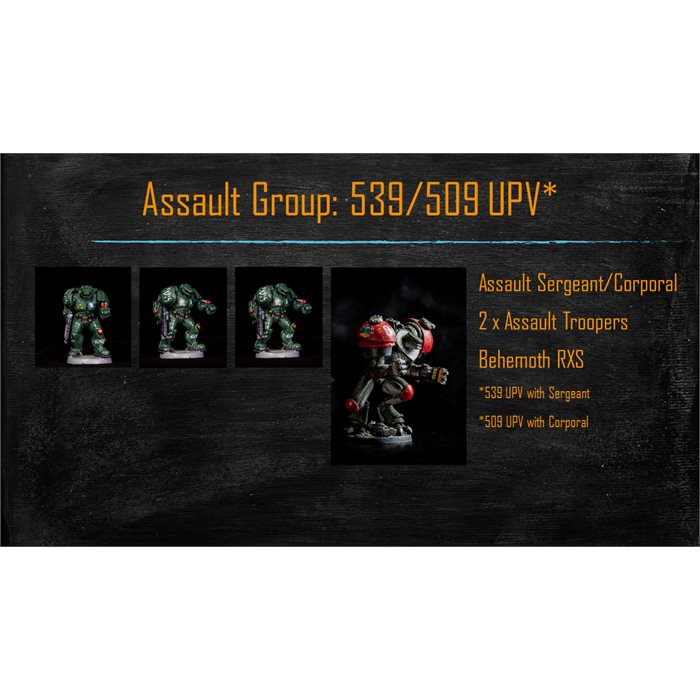 Assault Group