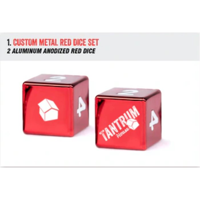 TWO Metal Dice