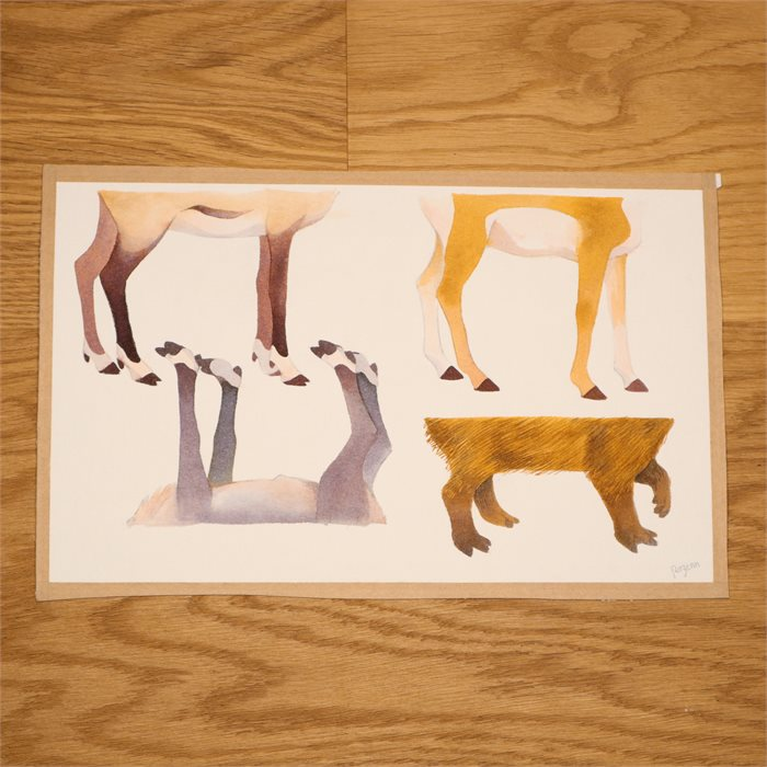 Wonderful hooves