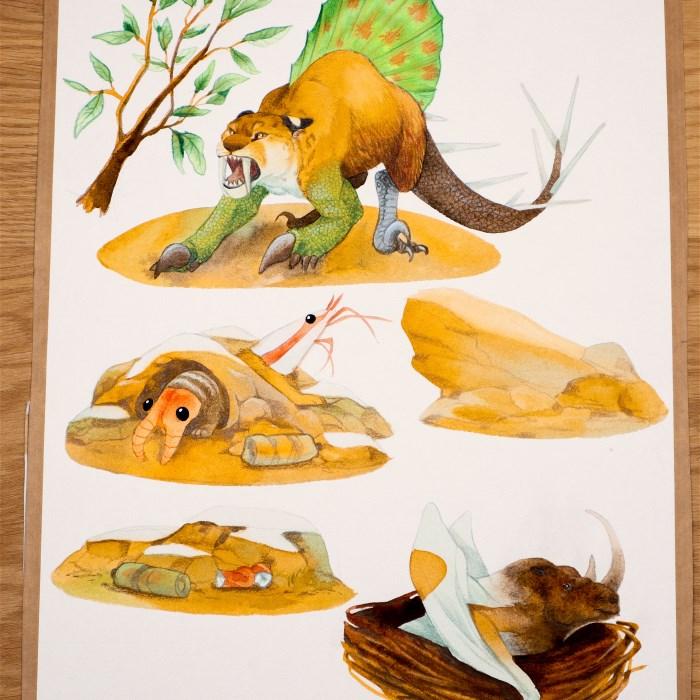 Darwin's treasures